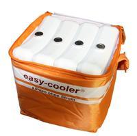 Ersatz- Gefrierakku -Set, Liebherr für easy-cooler®